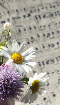 Blumen und Notenblatt